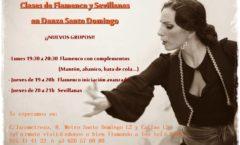 Clase de Flamenco y Sevillanas en madrid