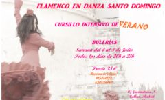 Flamenco en Danza Sato Domingo